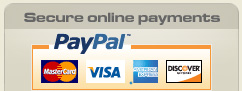 Secure PayPal payments